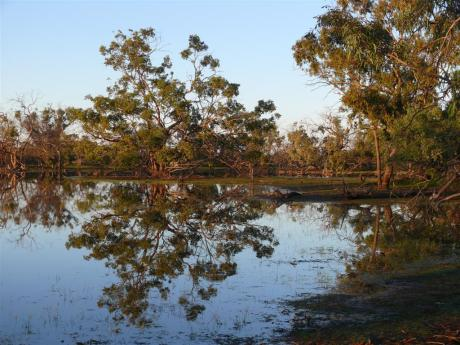 A lagoon on Kilcowera Station, Outback Queensland
